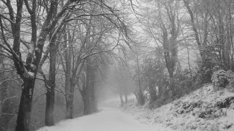 asturias en invierno - el gran sueño
