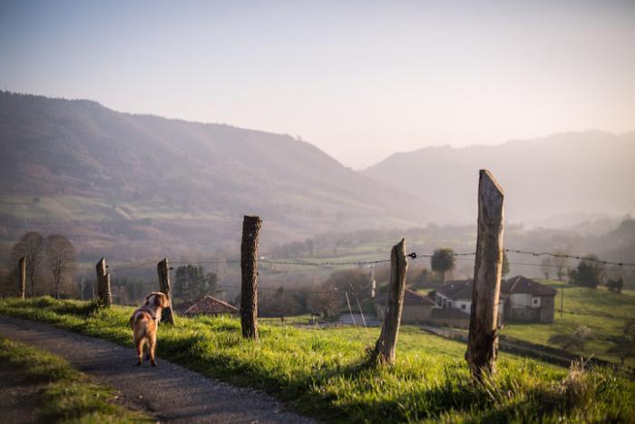 Views from la Formiga