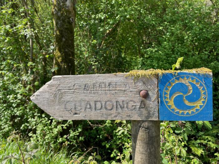 Señal del Camino a Covadonga - Borines
