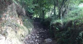 La cueva de Sidron asturias